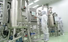 Bộ Y tế đề nghị CPH ngay 3 công ty vaccine