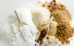 SEC lãi ròng 20 tỷ đồng quý 2 nhờ tăng 6.400 tấn sản lượng đường