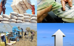 GDP năm 2014 ước tăng 5,98%