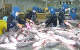 Bất lợi từ mức thuế mới đối với cá tra Việt Nam nhập khẩu vào Mỹ
