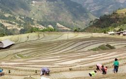 Thủ tướng phê duyệt danh mục dự án tài trợ 34 triệu USD cho Hà Giang