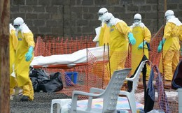 WHO xác nhận ít nhất 2.296 ca tử vong do dịch bệnh Ebola