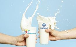 Thị trường sữa nước Việt Nam: Những kẻ tí hon đối đầu Vinamilk, Cô gái Hà Lan