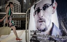 WikiLeaks: Snowden gửi đơn xin tị nạn tới 19 quốc gia