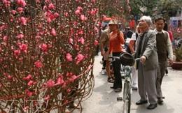 Chợ hoa Tết và thú chơi tao nhã của người Việt