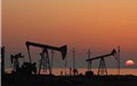 Giá dầu giảm mạnh, gần chạm đáy 2 tuần sau khi IEA hạ dự báo nhu cầu dầu thô