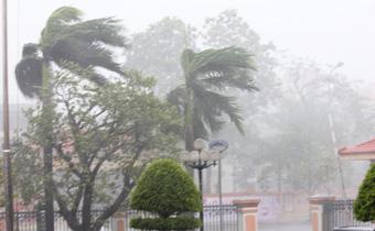 Áp thấp nhiệt đới, hướng vào bờ biển Quảng Ninh - Hải Phòng