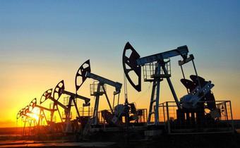 Thị trường ngày 22/1: Giá dầu tăng đẩy giá cao su lên cao nhất gần 8 tháng
