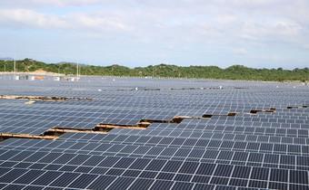 Quá tải lưới, các dự án điện mặt trời, điện gió Ninh Thuận có thể thiệt hại gần 480 tỷ đồng