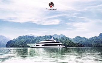 NS Phú Quang tổ chức đêm nhạc trữ tình trên du thuyền triệu đô Scarlet Pearl