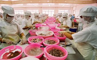 Vượt Mỹ, EU thành thị trường xuất khẩu thủy sản số một của Việt Nam