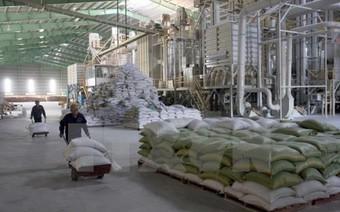 Phó Thủ tướng Vương Định Huệ yêu cầu khẩn trương triển khai cổ phần hóa Vinafood 2