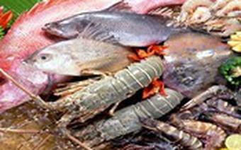 [Infographic] Bức tranh ngành thủy sản 10 tháng năm 2017