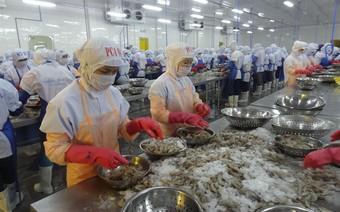 Làm gì để có 10 tỷ USD/năm từ xuất khẩu tôm?