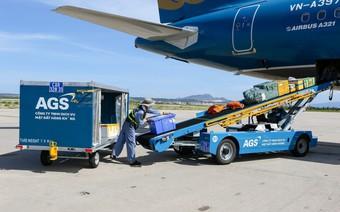 Dịch vụ Sân bay (ASG) dự chi 150 tỷ đồng nâng sở hữu tại CIAS lên 51%