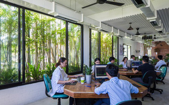 Hàng vạn dân văn phòng sẽ mơ ước được làm việc trong toà nhà ngập cây xanh này
