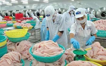 Không chỉ xuất khẩu mà nhập khẩu thủy sản nhập khẩu vào Việt Nam cũng tăng mạnh