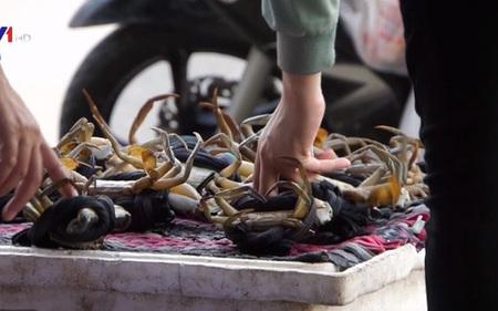 Sự thật cua biển siêu rẻ ở lề đường ĐBSCL
