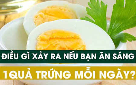 Ăn sáng bằng một quả trứng mỗi ngày cơ thể sẽ thay đổi thế nào?