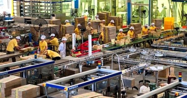 Đường Quảng Ngãi (QNS) ước lãi hợp nhất sau thuế hơn 1.200 tỷ đồng, giảm nhẹ so với 2018