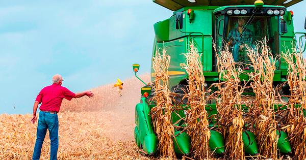 NYTimes: Góp công đưa ông Trump vào Nhà Trắng, cuộc chiến thương mại lại trở thành nỗi kinh hoàng với nông dân Mỹ