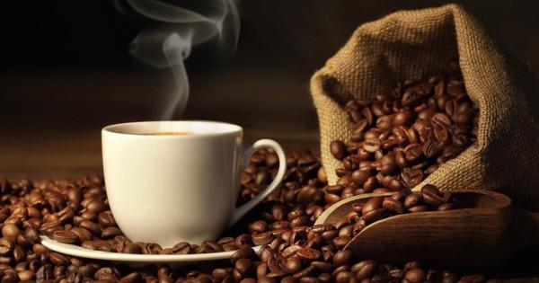 Kim ngạch xuất khẩu cà phê giảm 20% trong 8 tháng đầu năm 2019