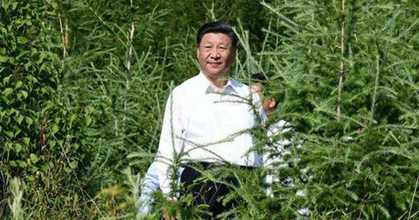 Thực hiện điều rất hiếm trong nhiệm kỳ của mình, chuyến thăm của ông Tập hé lộ vấn đề nổi cộm của Trung Quốc