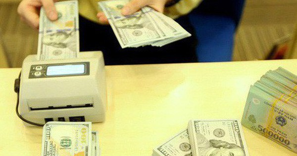 Không thu hẹp bảo lãnh ngoại tệ, Ngân hàng Nhà nước lo an ninh tiền tệ