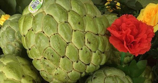 Sơn La xuất khẩu hơn 20.000 tấn quả ra thị trường thế giới
