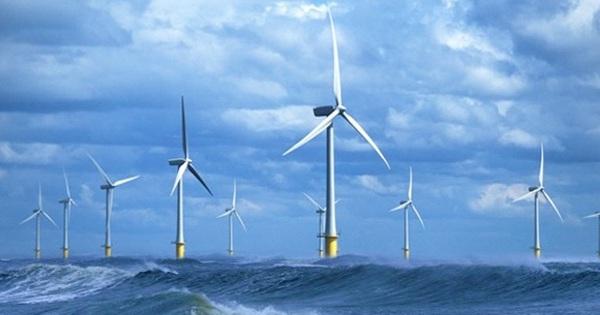 REE sắp đầu tư dự án điện gió 2.120 tỷ đồng tại Trà Vinh