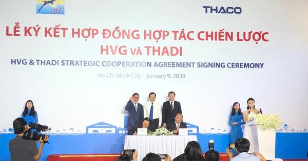 Thaco sẽ nắm 35% vốn của Thuỷ sản Hùng Vương (HVG), rót 65% vào liên doanh nuôi heo giống