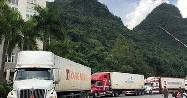 Hơn 500 container nông sản đang