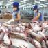 """Đề nghị 7 bộ vào cuộc giúp hải sản Việt thoát """"thẻ vàng"""" EU"""