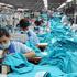 Cổ phiếu ngành dệt may và kỳ vọng mới vào CPTPP