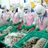 Úc bắt đầu cho phép nhập khẩu trở lại tôm chưa nấu chín