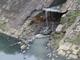 Đà Nẵng: Cá chết hàng loạt trên kênh nghi do ô nhiễm (?)