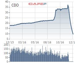 Cổ phiếu CDO lao dốc không phanh, nhiều nhà đầu tư mất tết