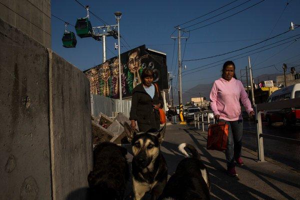 Có khoảng 50 bức vẽ graffiti dọc theo tuyến cáp treo ở Mexico. Ảnh: New York Times.