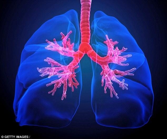 Các chuyên gia nói rằng những phát hiện có thể giúp giảm nhiễm trùng đường hô hấp cấp tính.