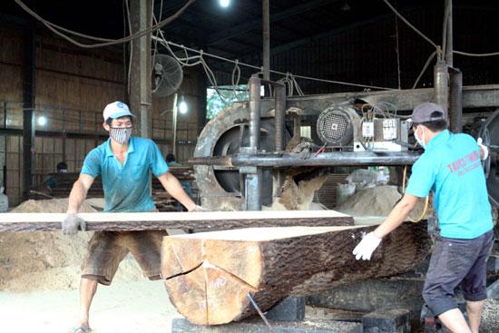 Giá gỗ nguyên liệu trong nước đã tăng mạnh trong thời gian qua. Ảnh: Thanh Vũ/TTXVN