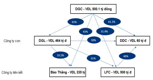 Tỷ lệ sở hữu của DGC tại các công ty con. Nguồn: DGC.