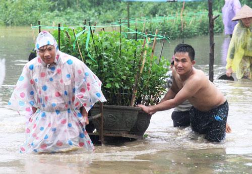 Người dân Quảng Ngãi cố gắng cứu hoa sau khi bị lũ nhấn chìm Ảnh: TỬ TRỰC