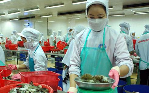 Cà Mau hiện có trên 4.000 doanh nghiệp trong và ngoài nước đang sản xuất, kinh doanh và đầu tư.