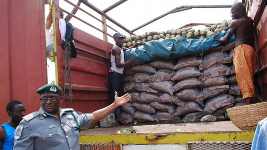 Gạo giả bị cơ quan chức năng Nigeria tịch thu gần đây. Ảnh: EPA