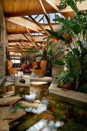 Hồ nước trong vắt uốn lượn với đàn cá bơi lội cạnh phòng khách sẽ là một không gian thư giãn tuyệt vời cho chủ nhà.
