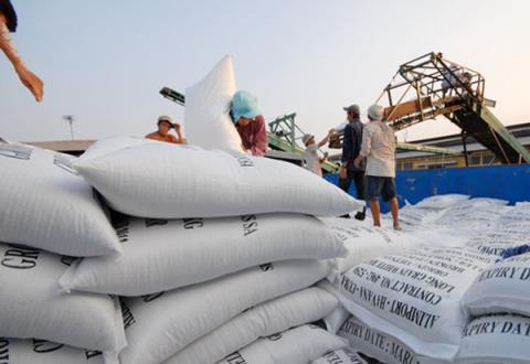 Gạo Việt ngày càng gặp nhiều khó khăn