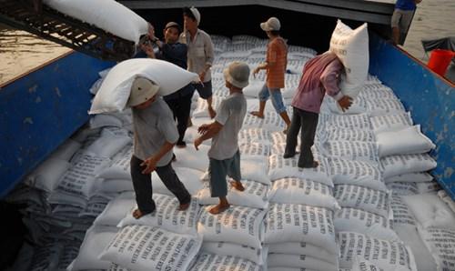 """Nhiều năm nay, dù xuất khẩu hàng triệu tấn/năm, gạo Việt vẫn chưa có """"tên tuổi"""" trên thế giới. Ảnh: Phương Chăm."""
