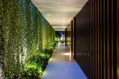 Vào ban đêm, màu xanh của cây cùng ánh sáng điện hắt ra từ trong các phòng tạo cảm giác lung linh, huyền ảo cho cả ngôi nhà.