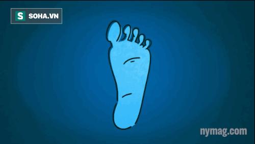 Chân sẽ trở thành công cụ làm hạ nhiệt.
