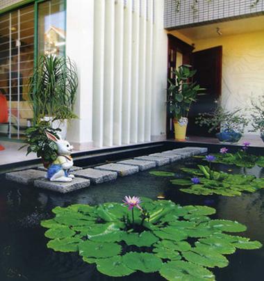 Khi thiết kế hồ nước chủ nhà cũng cần đặc biệt lưu ý về chọn vị trí, vật liệu và giải pháp chống thấm, luân chuyển nguồn nước hay chọn cây xanh...